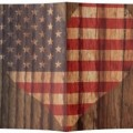 US Flag Wood Theme Passport Cover