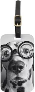 Dog Wearing Glasses Luggage Tag