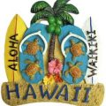 Hawaii Fridge Magnet